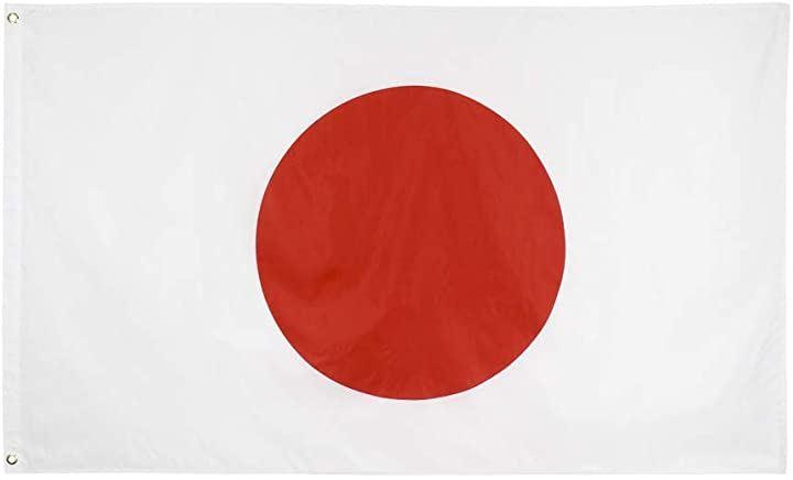 日の丸 日本国旗 90cmx150cm スポーツ観戦 応援(白、赤, 90cmx150cm)